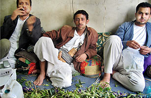 effects of khat chewing pdf